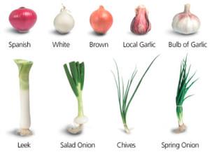 garlic3