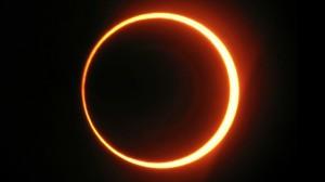 Vedic astrology g singh